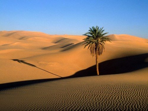 Sahara – largest desert on Earth