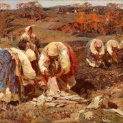 Stepan Kolesnikov. Picking potatoes