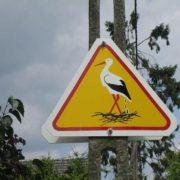 Stork road sign