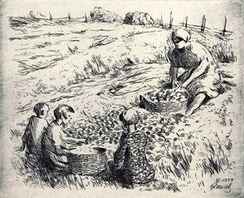 Vsevolod Voinov. Picking potatoes. 1939