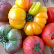 Wonderful tomatoes