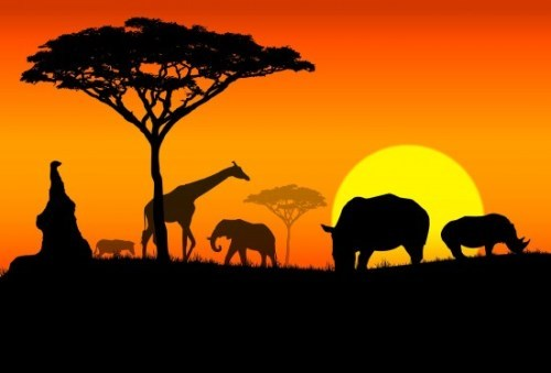 Africa - Land of Splendor