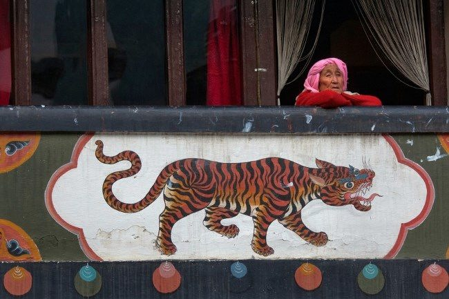 An elderly woman sits on a balcony, October 12, 2011. Reuters Adrees Latif