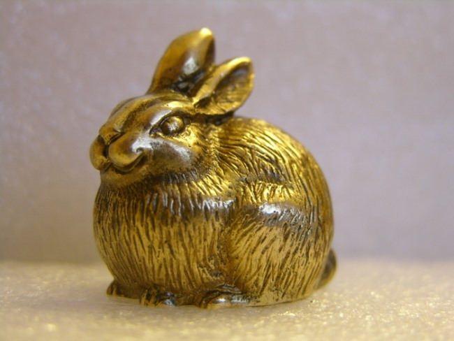 Attractive rabbit