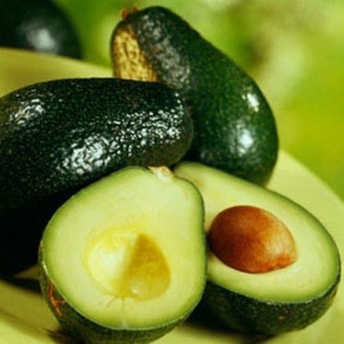 Avocado – interesting fruit