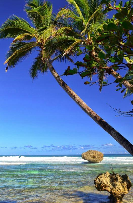Awesome Barbados