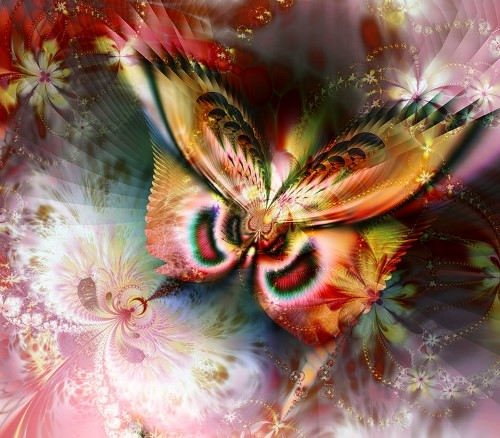 Beautiful fractals by Titia Vanbeugen