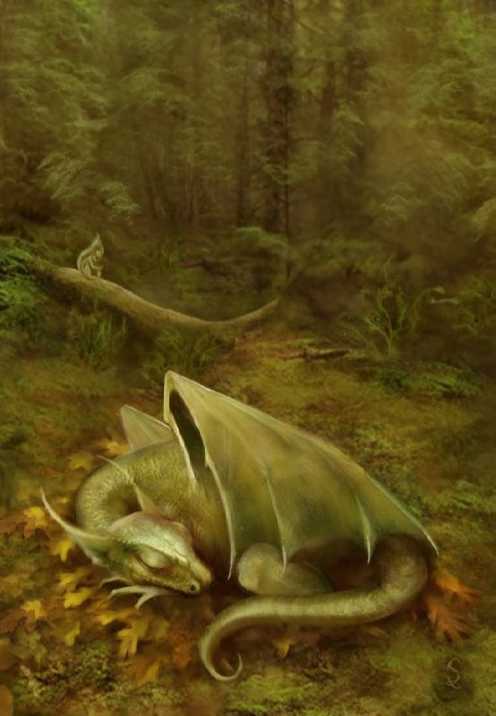 Charming dragon