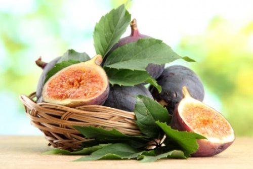 Charming fig