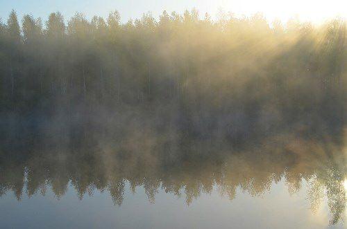 Charming fog