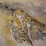 Cheetahs by Karen Laurence-Rowe