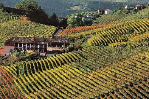 Chianti Wine Route
