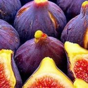Colorful fig