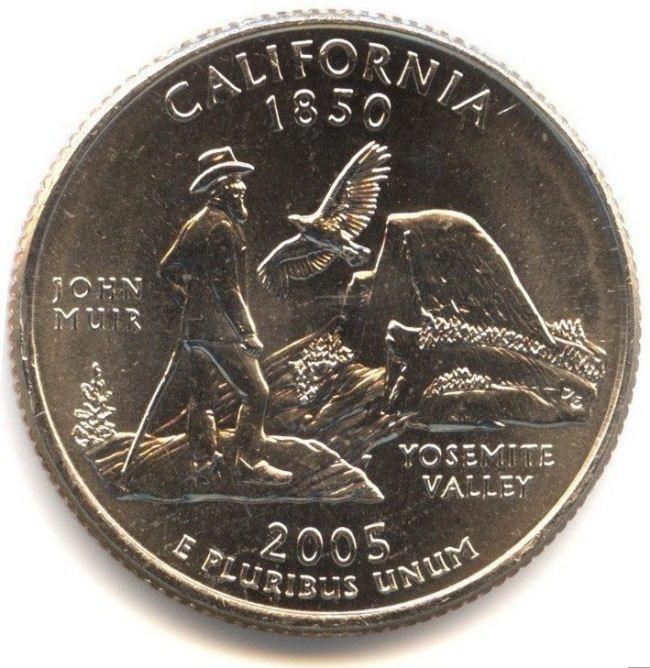 Condor on the coin
