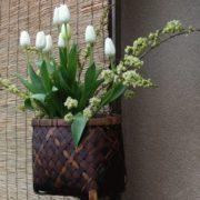 Flower ikebana