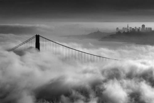 Fog in San Francisko