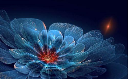 Fractal flower by Silvia Cordedda