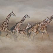 Giraffes by Karen Laurence-Rowe