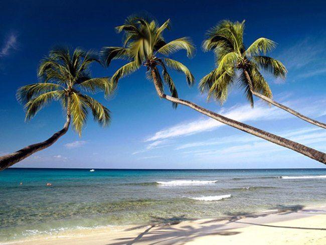 Gorgeous Barbados