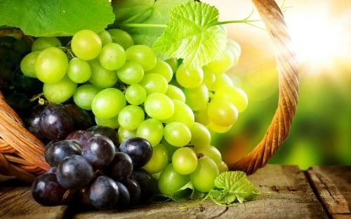 Grape - Fruit of the Vine