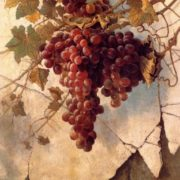 Grape by Edwin Deakin