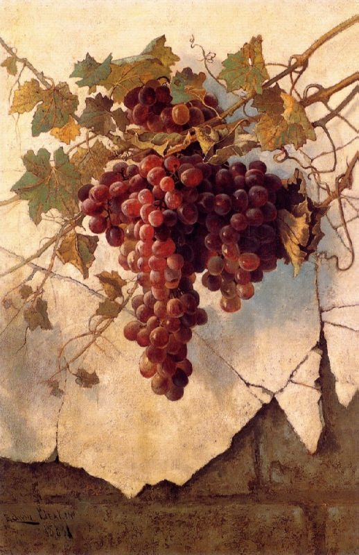 Grape by Edwin Deakin