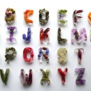Ice cubes alphabet by Petra Blahova