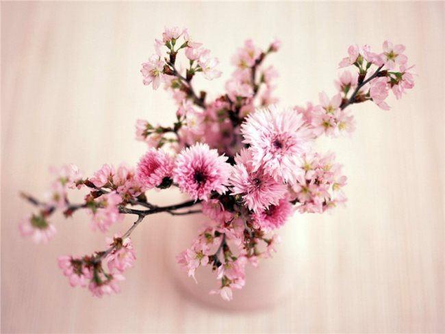 Interesting ikebana