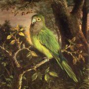 John O'Brien Inman. Parrot on a Branch, 1891