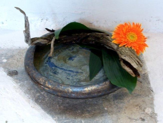 Laconic ikebana