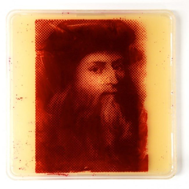 Leonardo da Vinci by Zachary Copfer