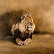 Lion by Karen Laurence-Rowe