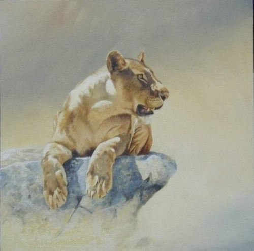 Lioness by Karen Laurence-Rowe