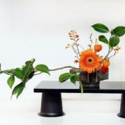 Magnificent ikebana
