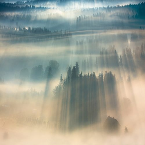 Misty landscapes by Boguslaw Strempel