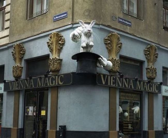 Photo by Madoka Sakamoto. Vienna, Austria