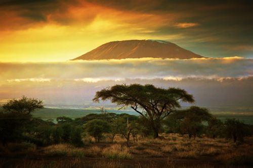 Pretty Africa