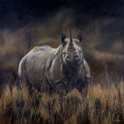 Rhino by Karen Laurence-Rowe