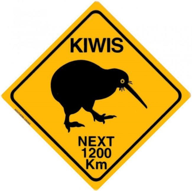 Road sign Kiwi crossing