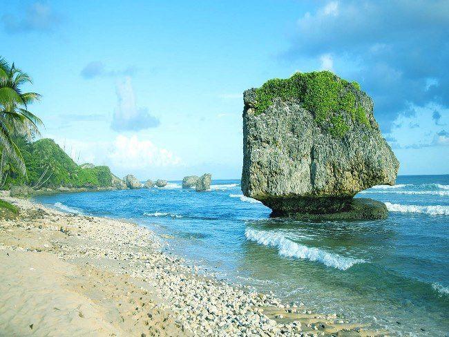 The beach of Barbados