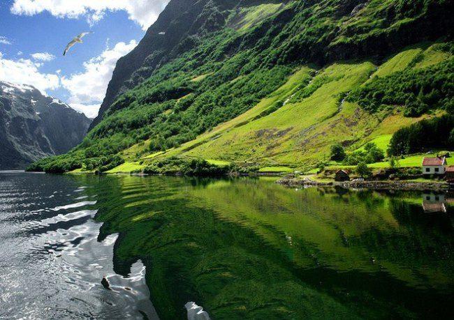 Attractive Norway