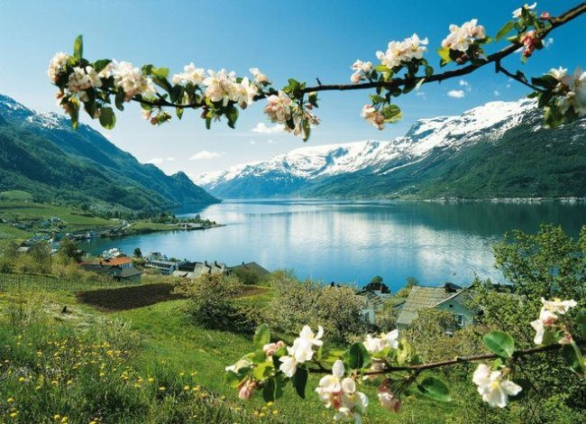 Awesome Norway