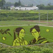 Charming rice art