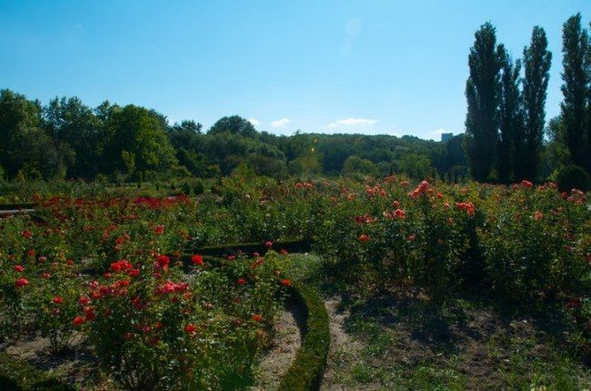 Chisinau Botanical Garden