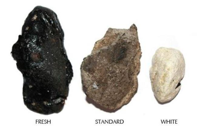 Fresh, standard and white ambergris