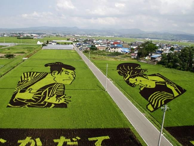 Gorgeous rice art