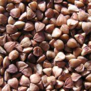 Healthy buckwheat