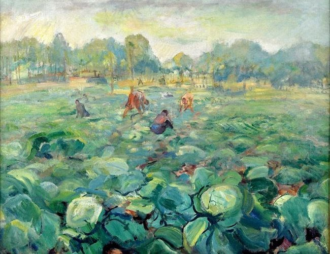 Pavel Kuznetsov. Collecting cabbage