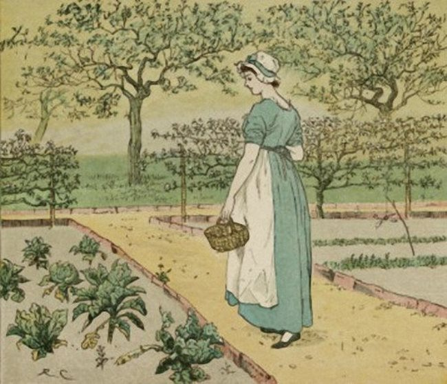 Randolph Caldecott. Girl Working in a Rural Kitchen Garden Collecting Cabbages