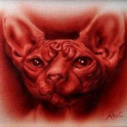Sphynx cat by Rev Mayers